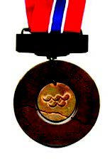 Reverse side of the gold medal from the Lillehammer 1994 Paralympic Winter Games